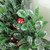 """6"""" Clear and Green Boxwood with Berry Tipped Christmas Hurricane Pillar Candle Holder - IMAGE 2"""