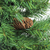 7.5' Medium Dakota Red Pine Artificial Christmas Tree - Unlit - IMAGE 2