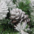 """24"""" Green and Brown Flocked Angel Pine with Pine Cones Artificial Christmas Wreath - Unlit - IMAGE 2"""