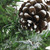 """24"""" Frosted Norway Pine with Pine Cones Medium Artificial Christmas Tree - Unlit - IMAGE 4"""