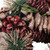 """Dusty Rose Pine Cones and Berries Artificial Christmas Wreath - 10.5"""" Unlit - IMAGE 3"""