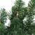"9' x 10"" Pre-Lit Pine Artificial Christmas Garland - Clear Dura-Lit Lights - IMAGE 2"