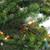 6.5' Pre-Lit Full Hunter Fir Artificial Christmas Tree - Clear Lights - IMAGE 2