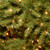 7.5' Pre-lit Dunhill Fir Slim Artificial Christmas Tree - Clear Lights - IMAGE 2