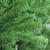 7.5' Waterton Spruce Medium Artificial Christmas Tree - Unlit - IMAGE 2
