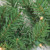 5-Piece Pre-Lit Artificial Winter Spruce Christmas Trees, Wreath and Garland Set - Clear Lights - IMAGE 5