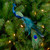 """12"""" Green and Blue Textured Peacock Christmas Ornament - IMAGE 2"""