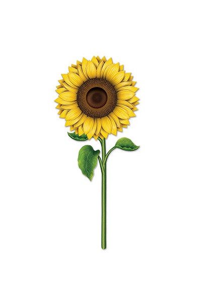 Pack Of 12 Double Sided Sunflower Spring Amp Summer Cutout