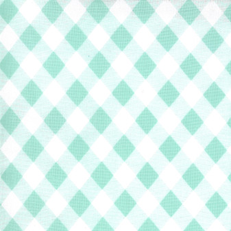 Sunday Stroll Gingham in Aqua by Bonnie And Camille