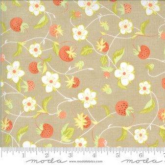 Chantilly by Fig Tree & Co. Strawberry Vine in Taupe