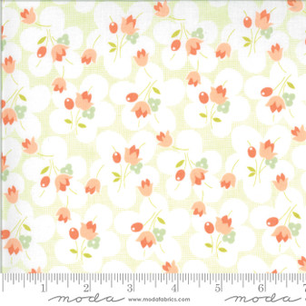Chantilly by Fig Tree & Co. #20342-26