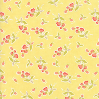 Coney Island by Fig Tree & Co. for Moda #20282-14