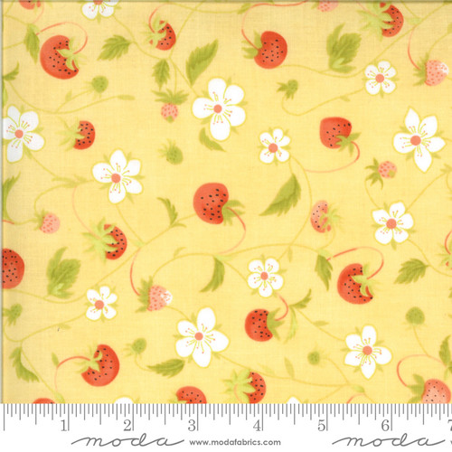 Chantilly by Fig Tree & Co. #20341-13