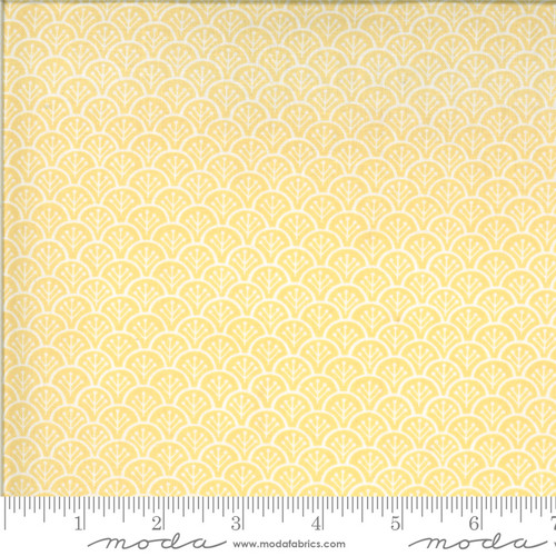 Chantilly by Fig Tree & Co. #20344-13