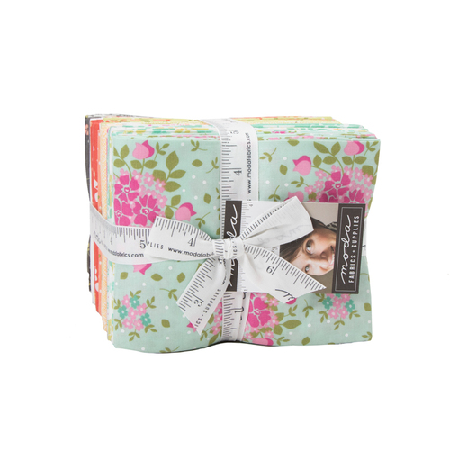 Canning Day Fat Quarter Bundle by Corey Yoder #29080AB