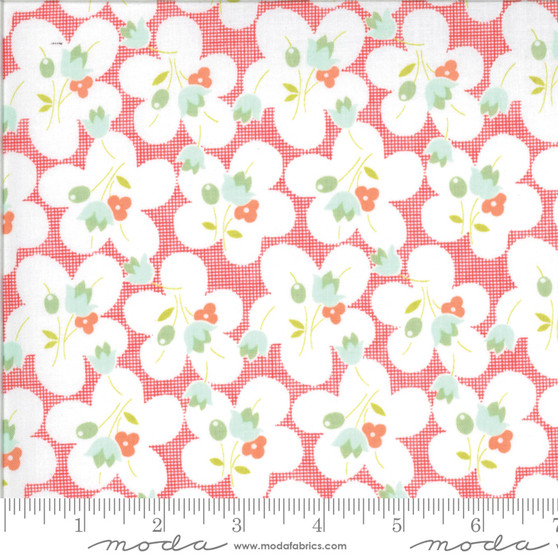 Chantilly by Fig Tree & Co. #20342-15