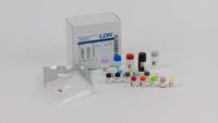 17-OH-Progesterone Saliva ELISA (SA E-6400)