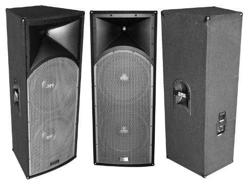ABSOLUTE ROS212 DUAL 12-INCH PROFESSIONAL SERIES 3000 WATTS P.M.P.O SPEAKER