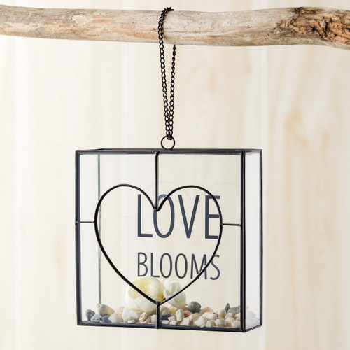 wire and glass planter hanging on branch with Love Blooms written on it and pebbles and flowers inside
