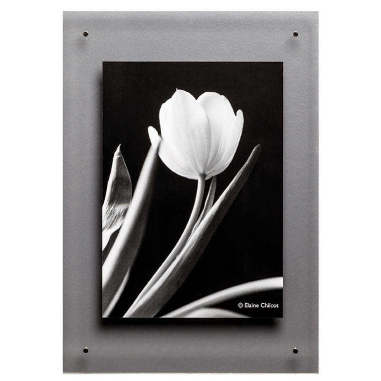 PHT01613 TPAC Photo Acrylic Wall Display A3 ADPA3