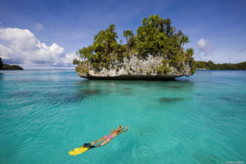 Discover Snorkeling - Pool