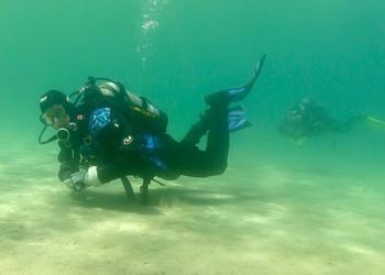 Drysuit Diver