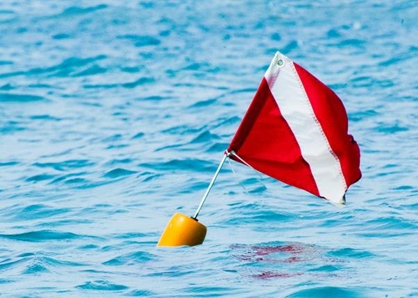 course-buoy.jpg