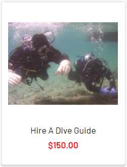 hire-a-divemaster.png