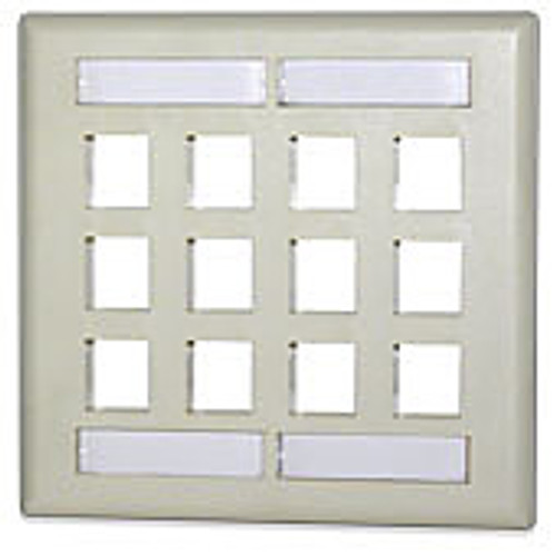 SignaMax DKFL-12-WH 12-Port Double Gang Faceplate w/Labeling, White