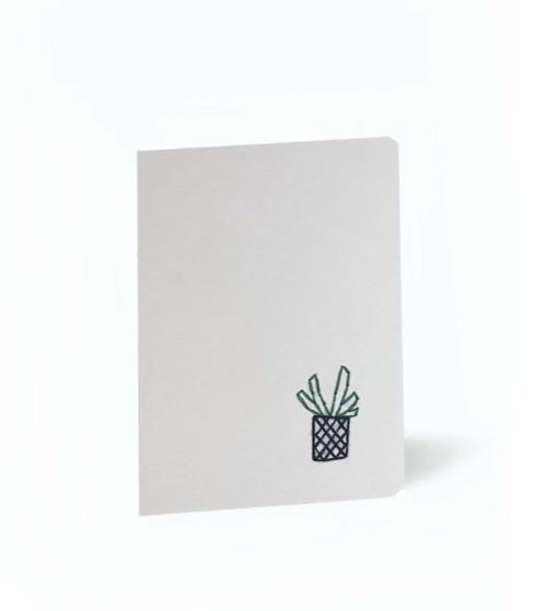 Succulent Mini Set of 5