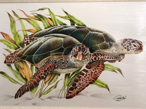 """Large Sea Turtles painting with wooden frame and fabric matting.  Reproduction of an original American artist. Computer painted on canvas with real wooden frame and fabric matting.   Sea turtle painting with frame measures  32""""x 24""""."""