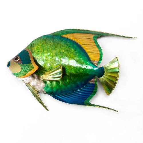 Queen Angelfish Single CO138