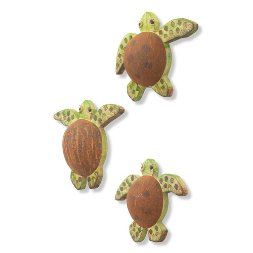 Coconut Shell Turtles Set of 3