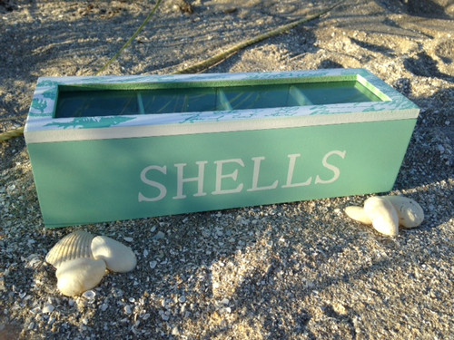 Shell Collector's Box