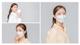 Air Queen Nano Mask by Med Gear USA [100pcs] @ $69
