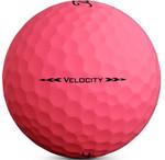 Titleist Ladies Velocity Color Golf Balls