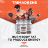 Burn body fat to product energy!