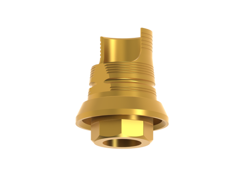 Titanium base for hybrid and screw-retained restorations. Angled screw channel window. Gold hue. Engaging. Screw and hygienic handler included.