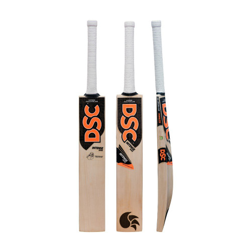 DSC Rage English Willow Bat