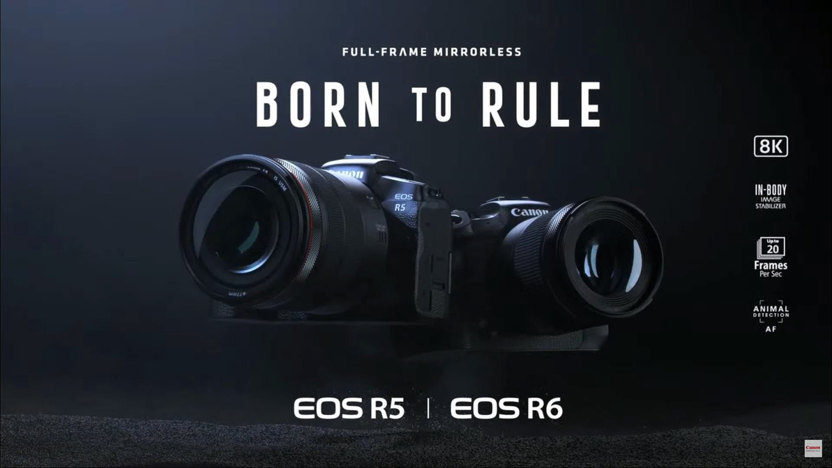 Canon 發表新一代 EOS R 系列旗艦無反 EOS R5 及 R6