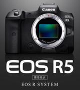 【新訊】Canon EOS R5 支援動物偵測AF、可錄8K 30fps與雙像素CMOS AF