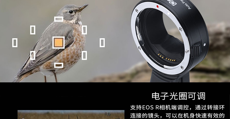 commlite-cm-ef-eosr-05.jpg