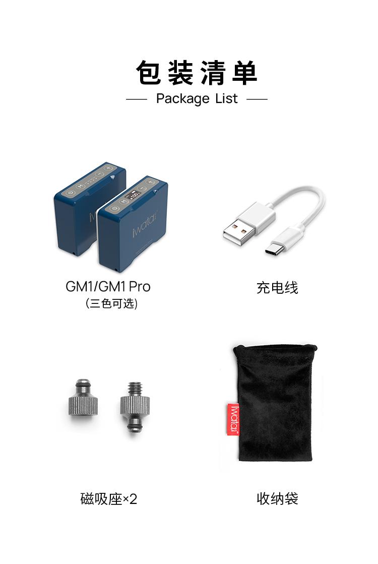 iwata-genius-m1-pro-17.jpg