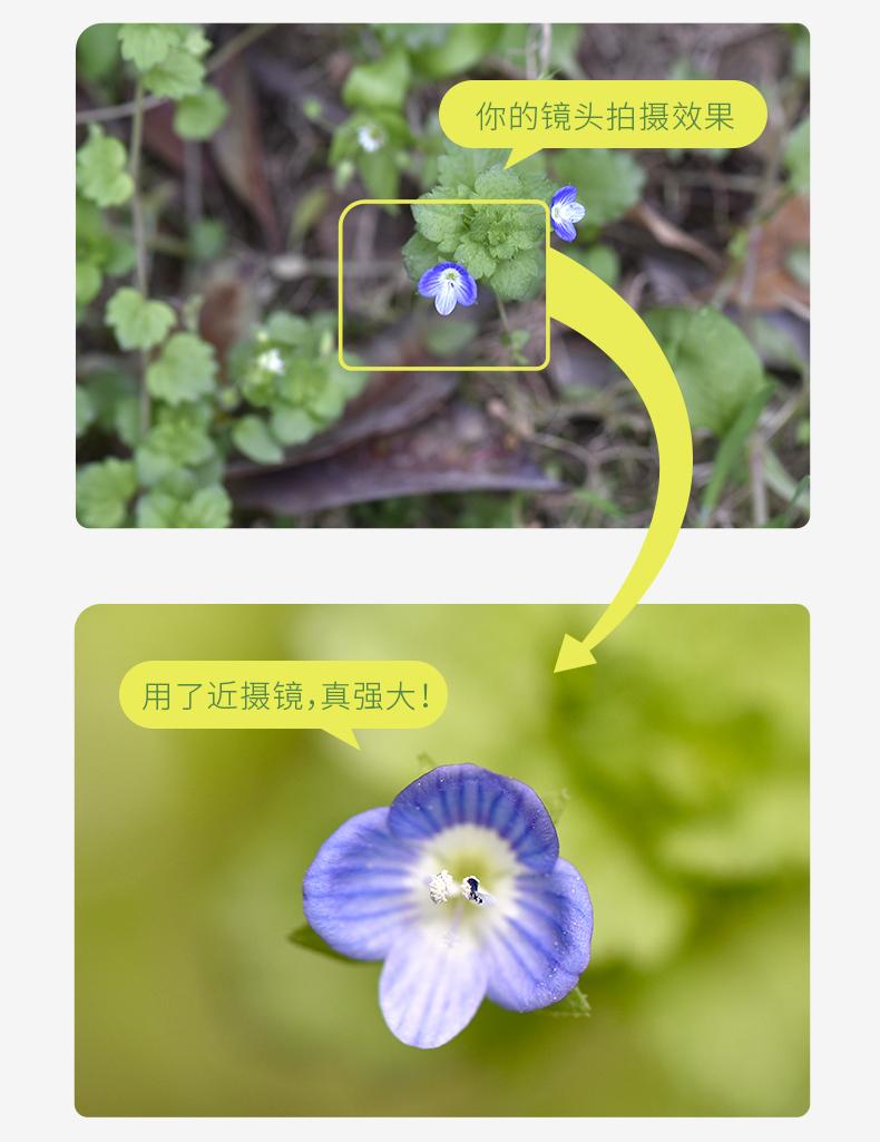 nisi-closeup-lens-kit-ii-05.jpg