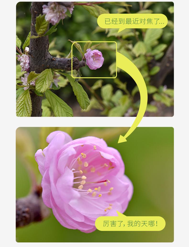 nisi-closeup-lens-kit-ii-06.jpg