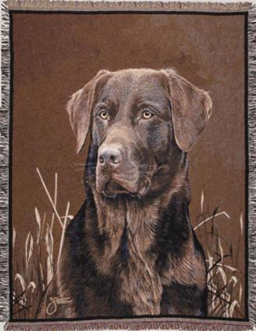 Chocolate Lab Portrait Tapestry Throw WT-TP820