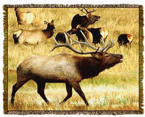 Elk Woven Afghan or Throw MS-1248TU4