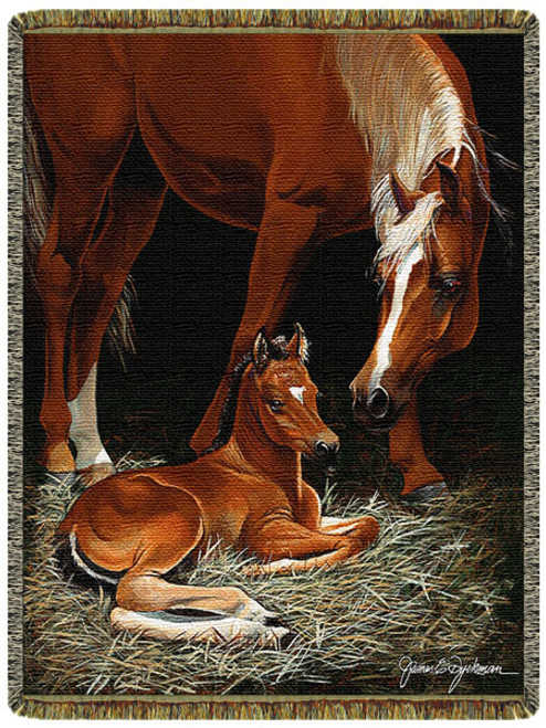 First Foal First Light Horse Tapestry Throw
