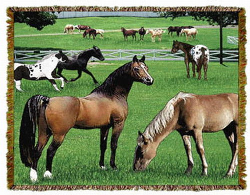 Horse Friends Throw MS 5136TU3