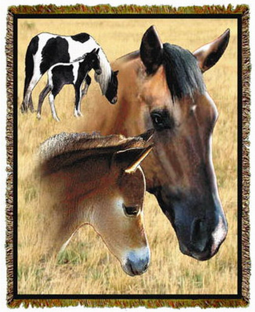 Horse Mare Foal Throw MS 7363TU4